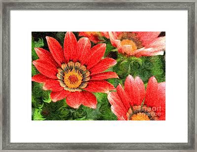 Vivid Orange African Daisy Digital Oil Painting Framed Print by Beverly Claire Kaiya