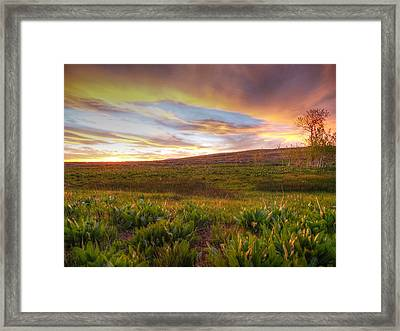 Vivid Sunset Framed Print by Jenessa Rahn