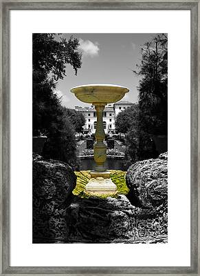 Vizcaya Mansion Museum Grounds Botanical Gardens Fountain Miami Florida Vertical Color Splash Bw Framed Print