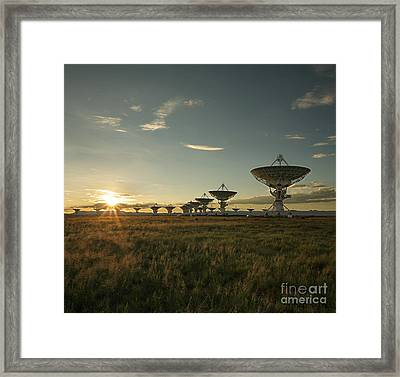 Vla At Sunset Framed Print