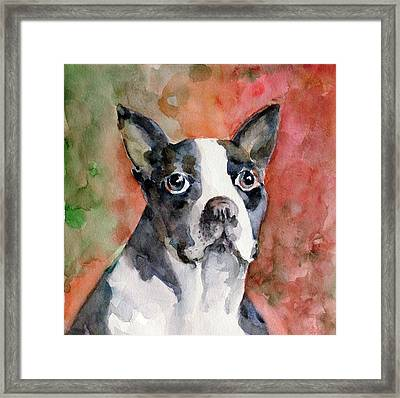 Vodka - French Bulldog Framed Print