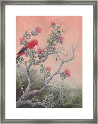 Volcanic Glow Framed Print by Dorothea Hyde