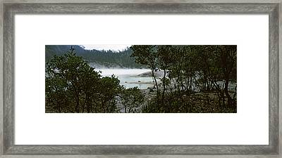 Volcanic Lake In A Forest, Kawah Putih Framed Print by Panoramic Images