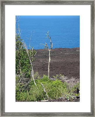 Volcano Rocks - Ile De La Reunion - Reunion Island Framed Print by Francoise Leandre
