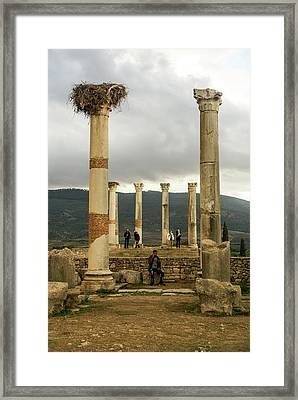 Volubilis Archeological Site Framed Print by Photostock-israel