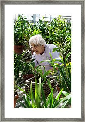 Volunteer At A Botanic Garden Framed Print