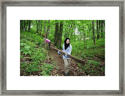 Volunteers Clearing A Woodland Trail Framed Print