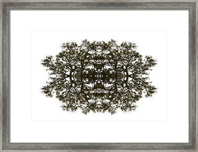 Voodoo Mask Framed Print