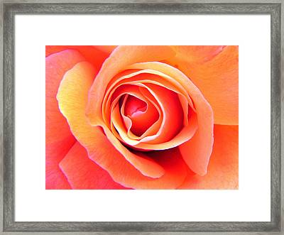 Framed Print featuring the photograph Vortex by Deb Halloran