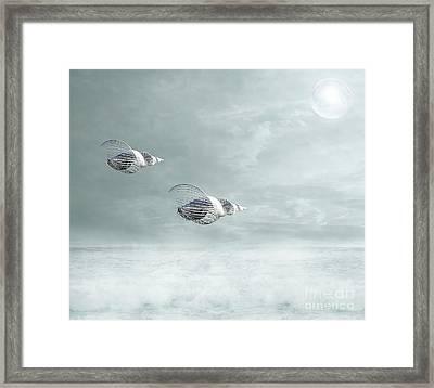 Voyage Framed Print by Jacky Gerritsen