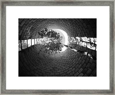 Voyage Framed Print by Tom Druin