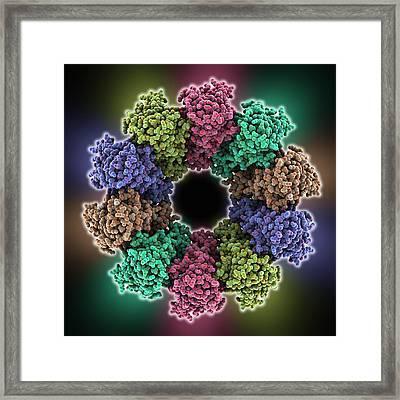Vsiv Virus Protein Complex Framed Print