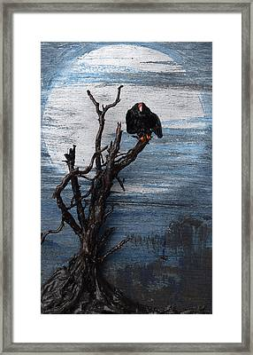 Vulture With Blue Moon Framed Print