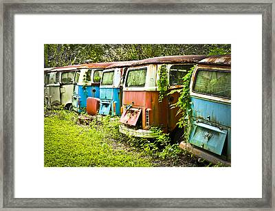 Vw Buses Framed Print by Carolyn Marshall