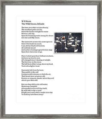 W B Keats - The Wild Swans At Atcoole Framed Print