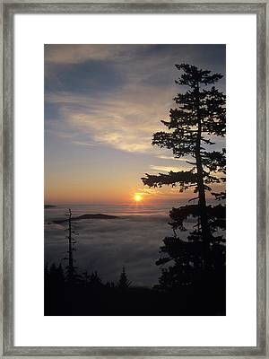 Wa, Olympic National Park, Hurricane Framed Print