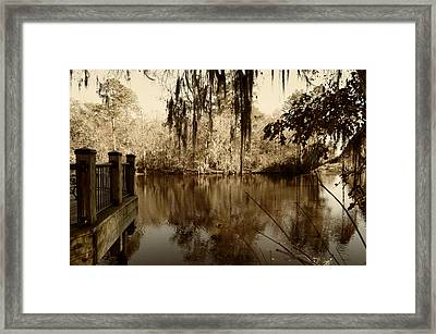 Waccamaw River In Autumn Sepia Framed Print