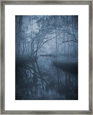 Waccasassa River Framed Print by Phil Penne