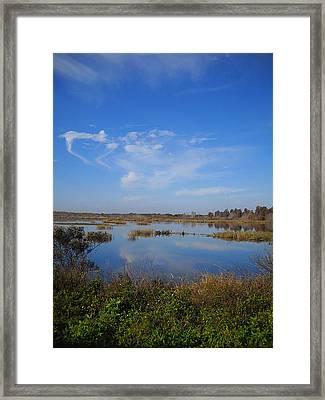 Wading Bird Way 001 Framed Print by Chris Mercer