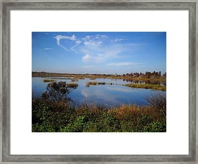 Wading Bird Way  Framed Print by Chris Mercer