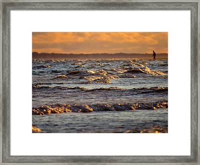 Wading In Jewel Tipped Water Framed Print by Dianne Cowen