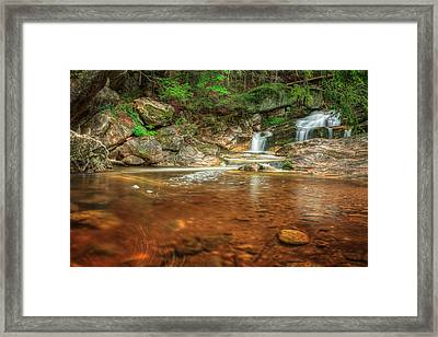 Wading Pool Framed Print by Bill Wakeley