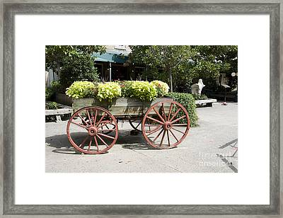 wagon of flowers on Julian Street Framed Print