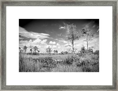 Wagon Wheel Road Bw Framed Print by Rudy Umans
