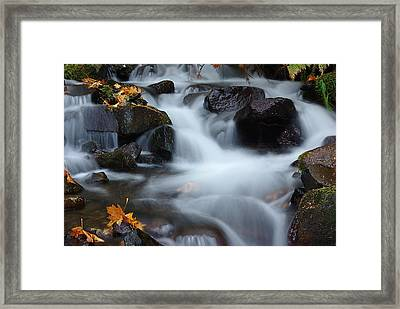 Wahkeena Creek 3 Framed Print