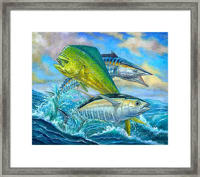 Wahoo Mahi Mahi And Tuna Framed Print by Terry  Fox