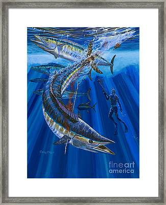 Wahoo Spear Framed Print by Carey Chen