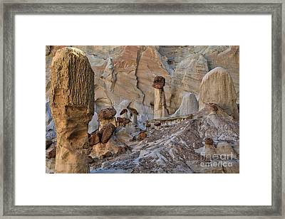 Wahweap Guardian Framed Print
