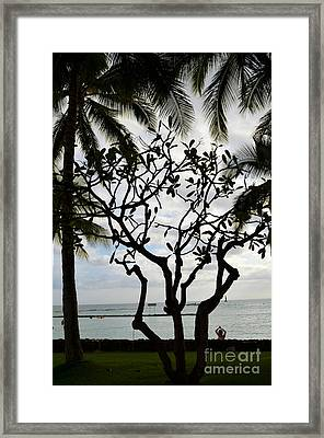 Waikiki Beach Hawaii Framed Print