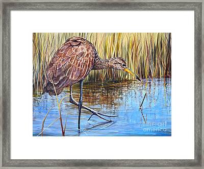 Wailing Bird Framed Print by AnnaJo Vahle