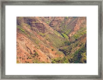 Waimea Canyon Abstract Framed Print