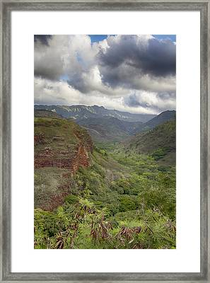 Waimea Canyon Lookout Framed Print by Douglas Barnard