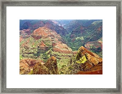 Waimea Canyon Framed Print by Scott Pellegrin