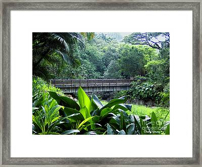 Waimea Falls Park Framed Print by Cheryl Young