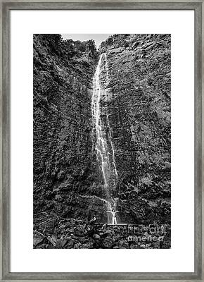 waimoku Awakening Framed Print by Jamie Pham