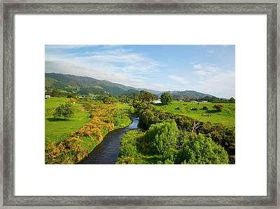 Wairaparapa, North Island, New Zealand Framed Print by Douglas Peebles