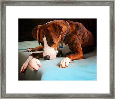 Framed Print featuring the photograph Wait For It      Wait For It by Robert McCubbin
