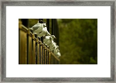 Waiting  Framed Print by Ahmed Alkaabi