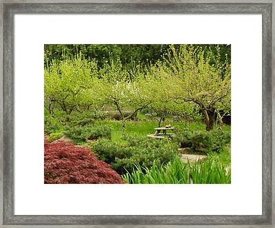 Waiting And Ready Framed Print