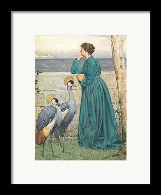 Crane Paintings Framed Prints