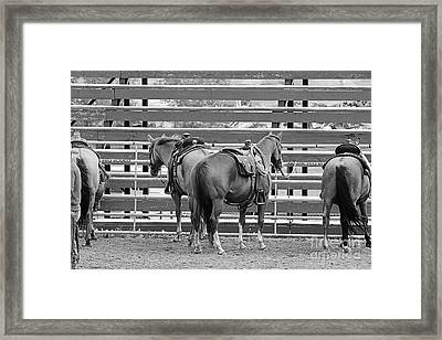 Framed Print featuring the photograph Waiting by Ann E Robson