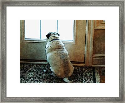 Waiting... Framed Print by Michael Stowers