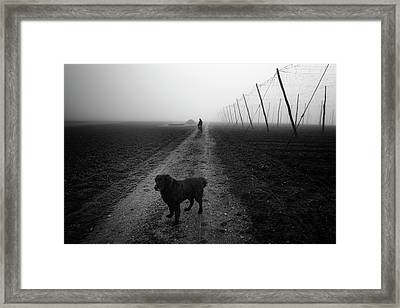 Waiting For A Friend Framed Print