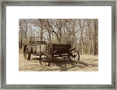 Waiting For A Horse Framed Print by Kathleen Scanlan