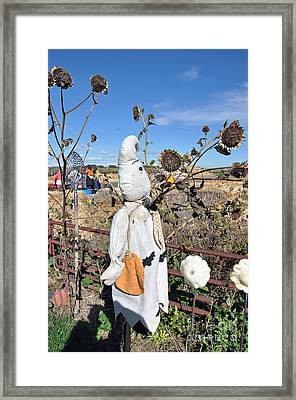 Framed Print featuring the photograph Waiting For Darkness by Minnie Lippiatt