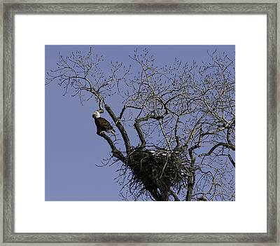 Waiting For Her Return Framed Print by Thomas Young